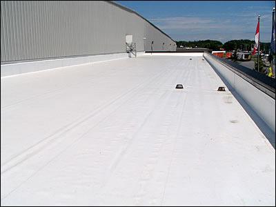 Roofers Geneva Waterloo Seneca Falls D E Miller Co